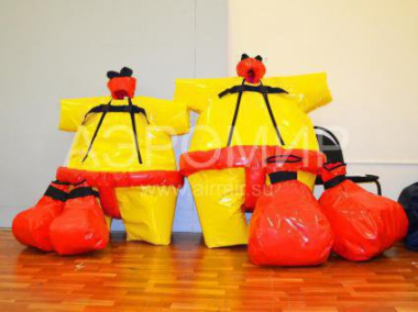 Set of gloves and sumo suits
