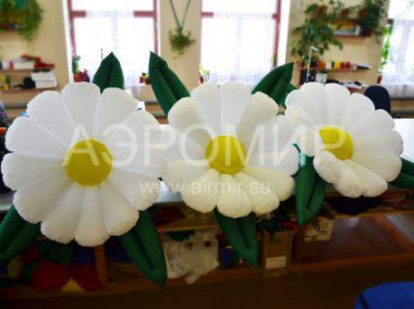 White chamomile inflatable flowers
