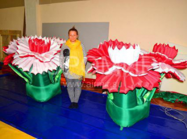 "Inflatable flower ""Carnation"" white and red"